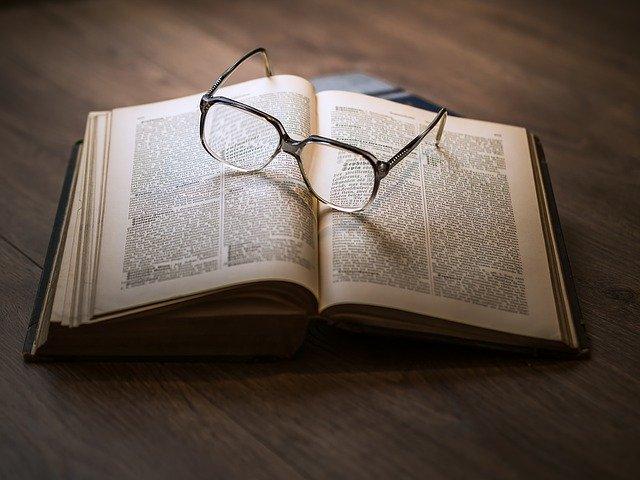 סקירה ספרותית