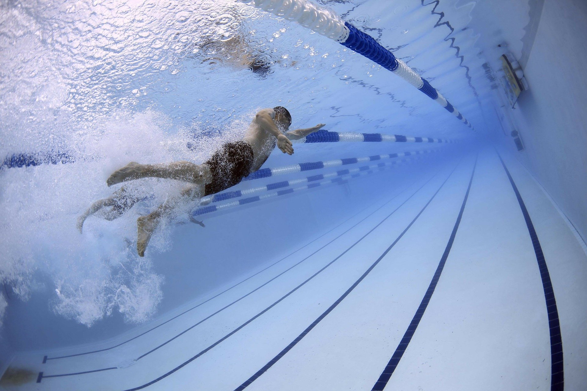 לימודי שחייה